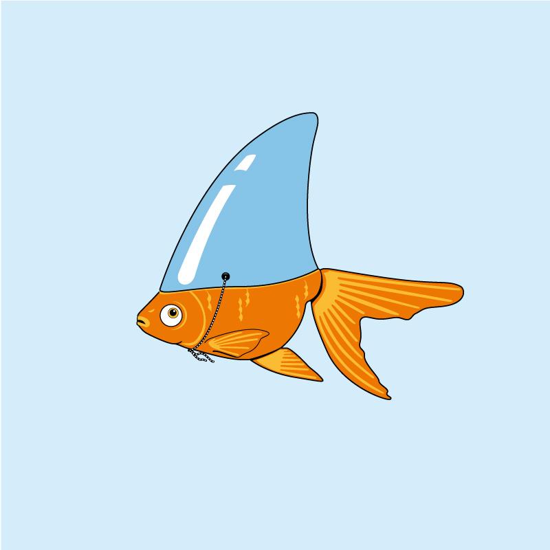 Fulovlav-Siculamente-A-cumminzioni-pesce