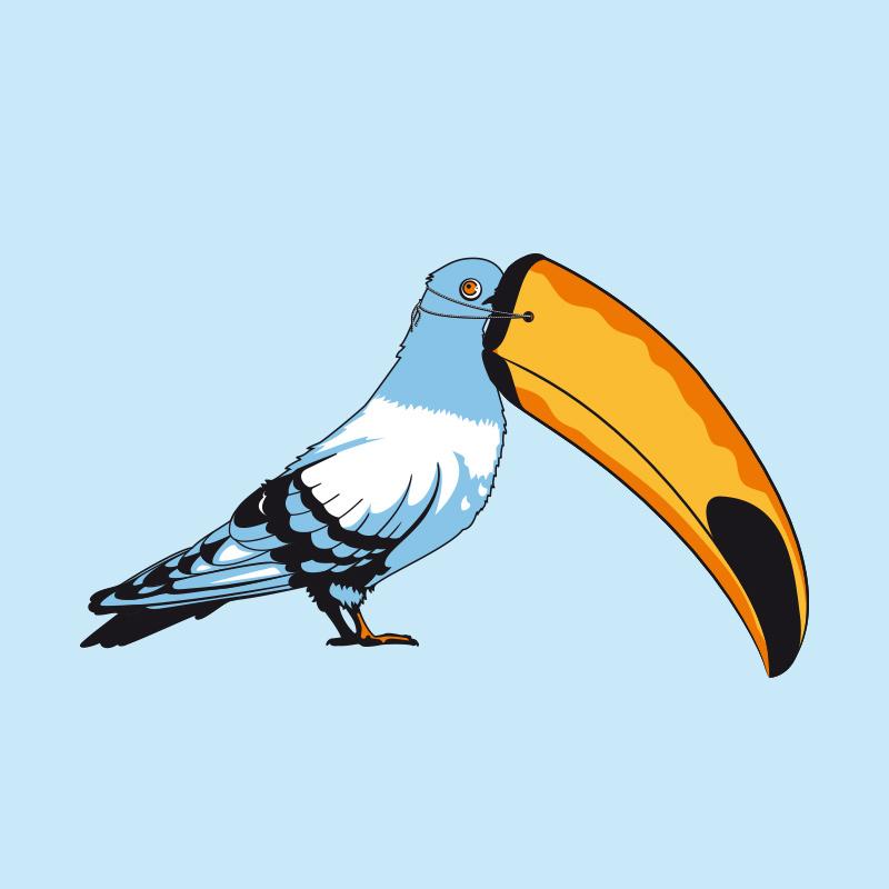 Fulovlav-Siculamente---A-cumminzioni-piccione-800x800